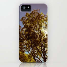Forest Sun iPhone Case