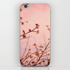 Expectation iPhone & iPod Skin