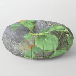 The Garden Wall Floor Pillow