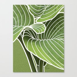 Hosta Detail Canvas Print