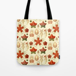 Ernst Haeckel - Scientific Illustration - Asteroidea Tote Bag