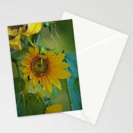 Sunflower Solar System Stationery Cards