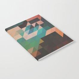 MAR8 Notebook