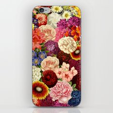 Spring Explosion iPhone & iPod Skin