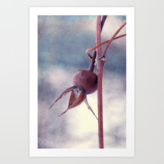 captured Art Print