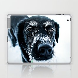 Snow Dog // Cross Country Skiing Black and White Animal Photography Winter Puppy Ice Fur Laptop & iPad Skin