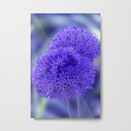 little pleasures of nature -302- Metal Print