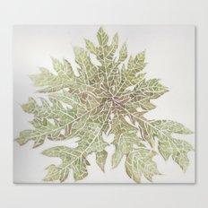 50 Shades of Green Canvas Print