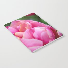 Hues of Pink Notebook