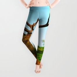 The Stag on the hill Leggings