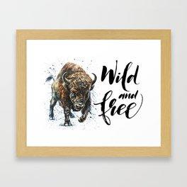 Buffalo Wild and Free Framed Art Print