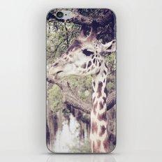 Regal iPhone & iPod Skin