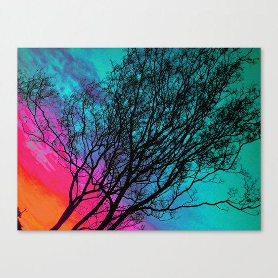 Behind The ol' Crape Myrtle Canvas Print