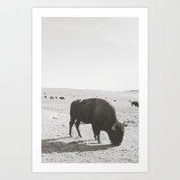 utah Art Prints featuring Utah  by Jenny J Norris