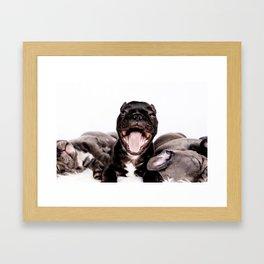 It's a Ruff life being a Puppy! Framed Art Print