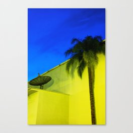 The Dish and the Palm Canvas Print