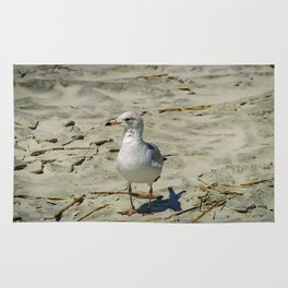 Ignored by a Seagull Rug