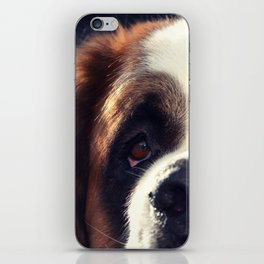 Happiness is My Dog iPhone Skin