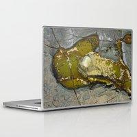 rocky Laptop & iPad Skins featuring Rocky by CrismanArt