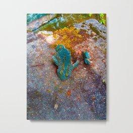 Shattered Frog Metal Print