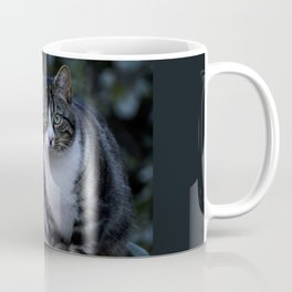 Green eyes cat Coffee Mug