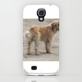 snow dog iPhone Case