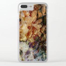 Incubation Clear iPhone Case
