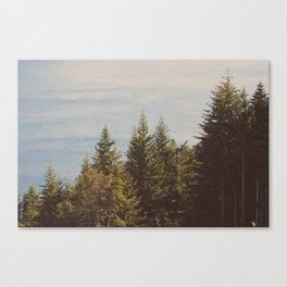 New Zealand 1 Canvas Print