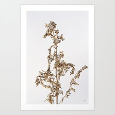 Florales · plant end 1 Art Print