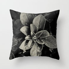 Rainy Leaves  Throw Pillow