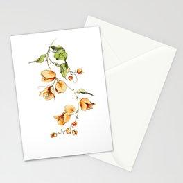 Orange Bougainvillea Illustration Stationery Cards