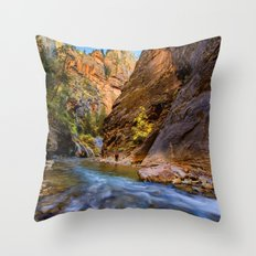 Lets rock the River XVI Throw Pillow