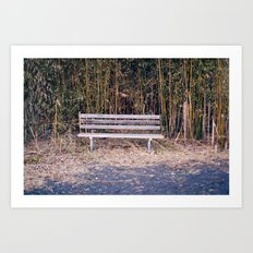 Bench in Brick, NJ Art Print