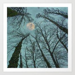Magic moon over the trees Art Print
