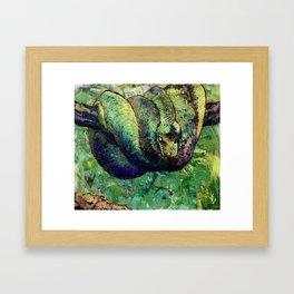 Green Tree Viper Framed Art Print