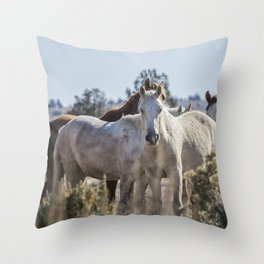 Traveler and His Bachelor Band Throw Pillow