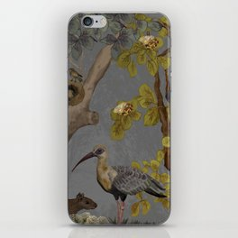 assembly of birds and one cute agouti iPhone Skin