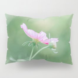 Cosmos in August Pillow Sham