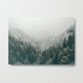 Foggy Forest 3 Metal Print