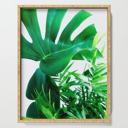 Tropical Display Serving Tray