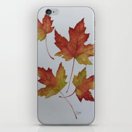 Woodward Red Leaves iPhone Skin