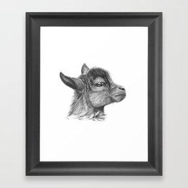 Goat baby G099 Framed Art Print