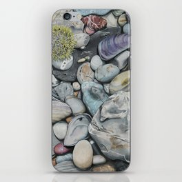 Beach4 iPhone Skin