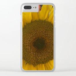 Beautiful  yellow sun flower Clear iPhone Case