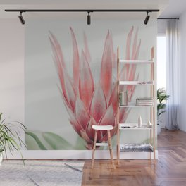 King Protea flower Wall Mural
