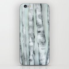 Birch trees in winter iPhone & iPod Skin