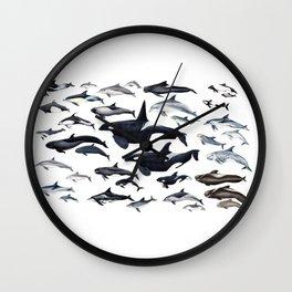 Dolphin diversity Wall Clock