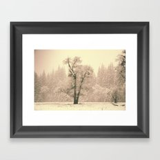 Yosemite Lonely Tree Framed Art Print