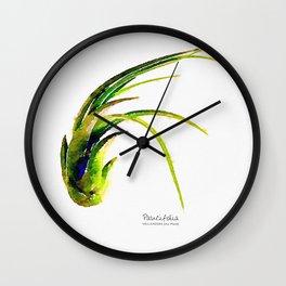 Tillandsia Paucifolia Air Plant Watercolors Wall Clock