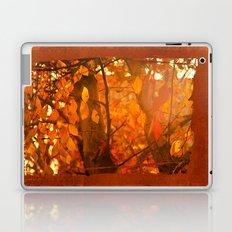 Fire  Fantasy Laptop & iPad Skin
